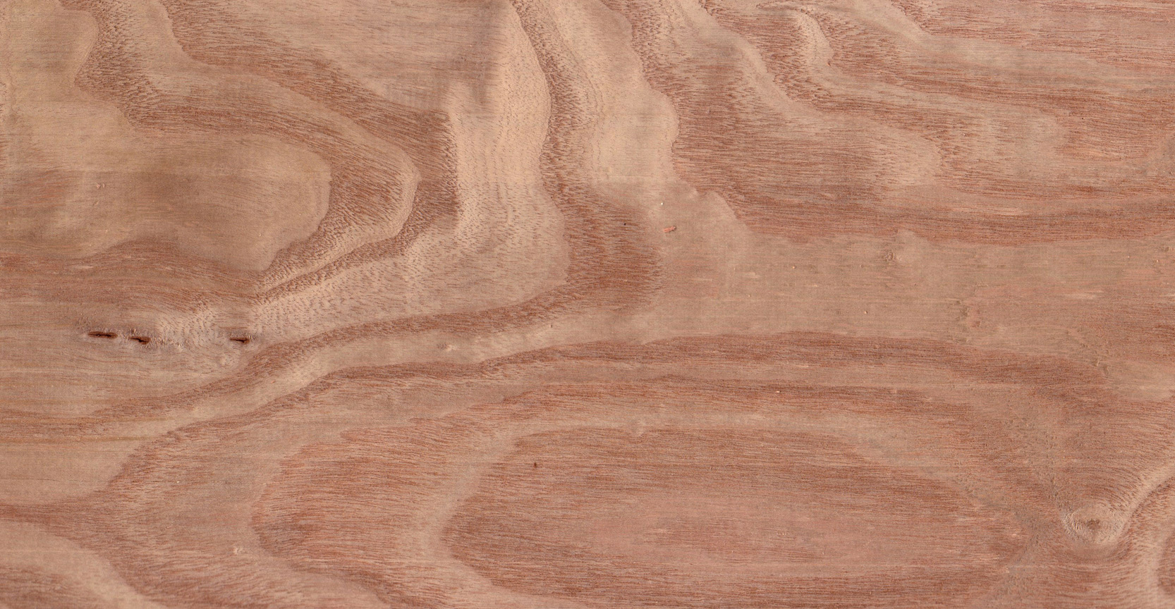 Black And Red >> Metro Hardwoods - Available Species